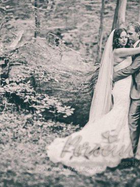 Poroka v gozdu